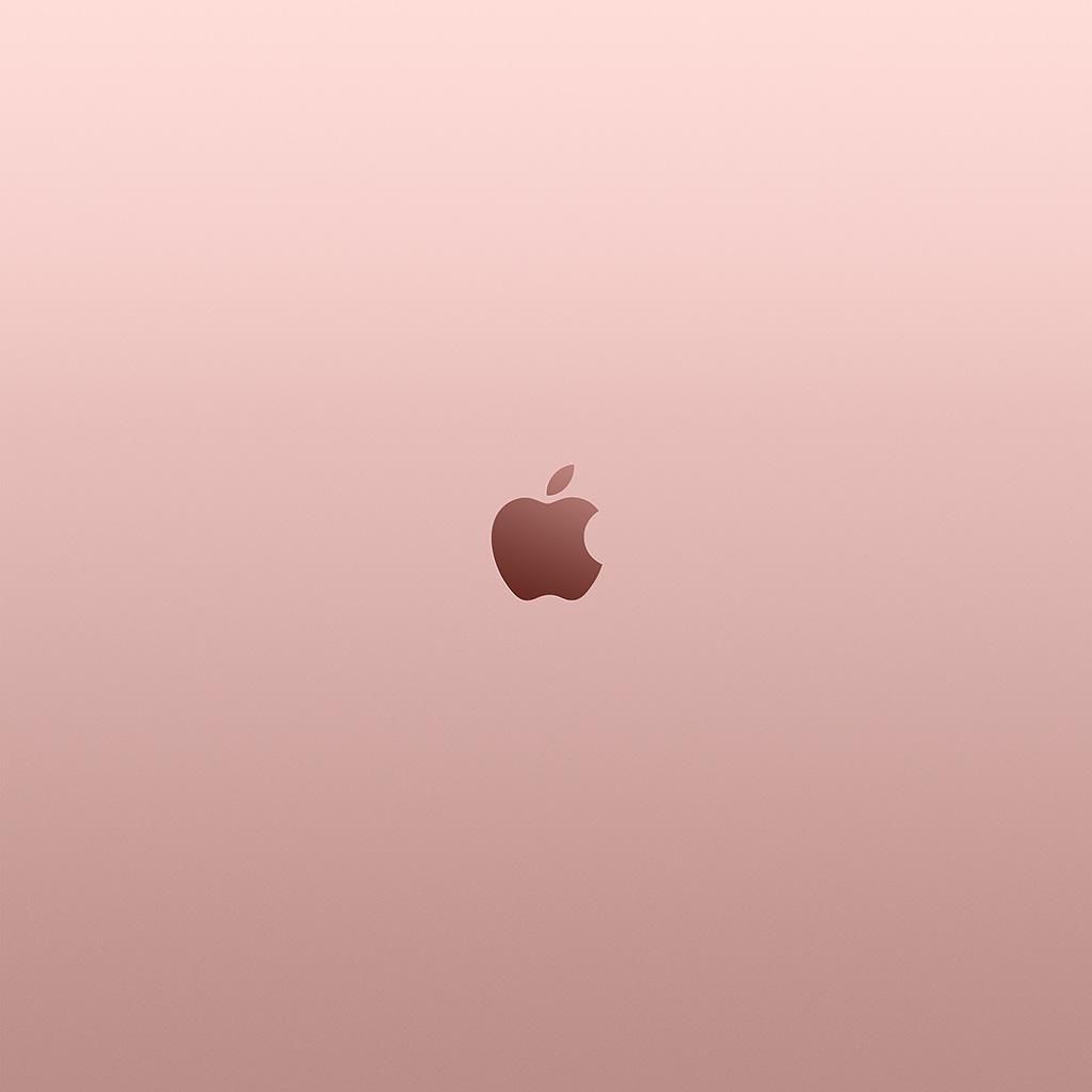 iPad Retina