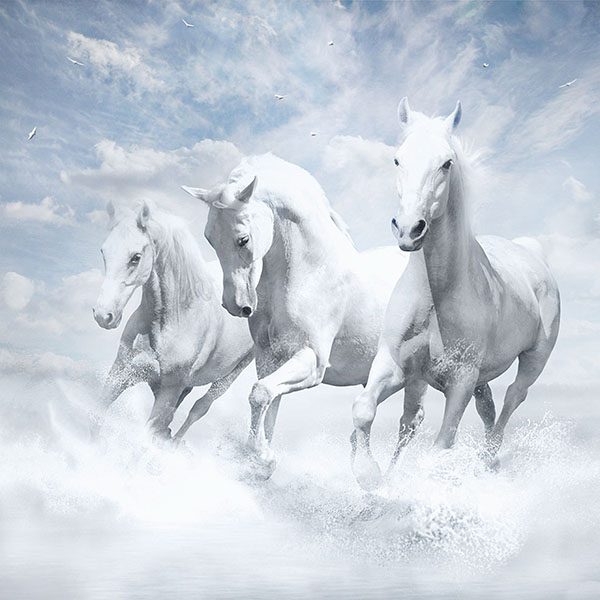 iPapers.co-Apple-iPhone-iPad-Macbook-iMac-wallpaper-au21-white-horses-water-sky-illustration-art-wallpaper