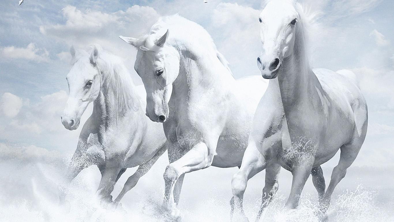 Wallpaper For Desktop Laptop Au21 White Horses Water Sky Illustration Art