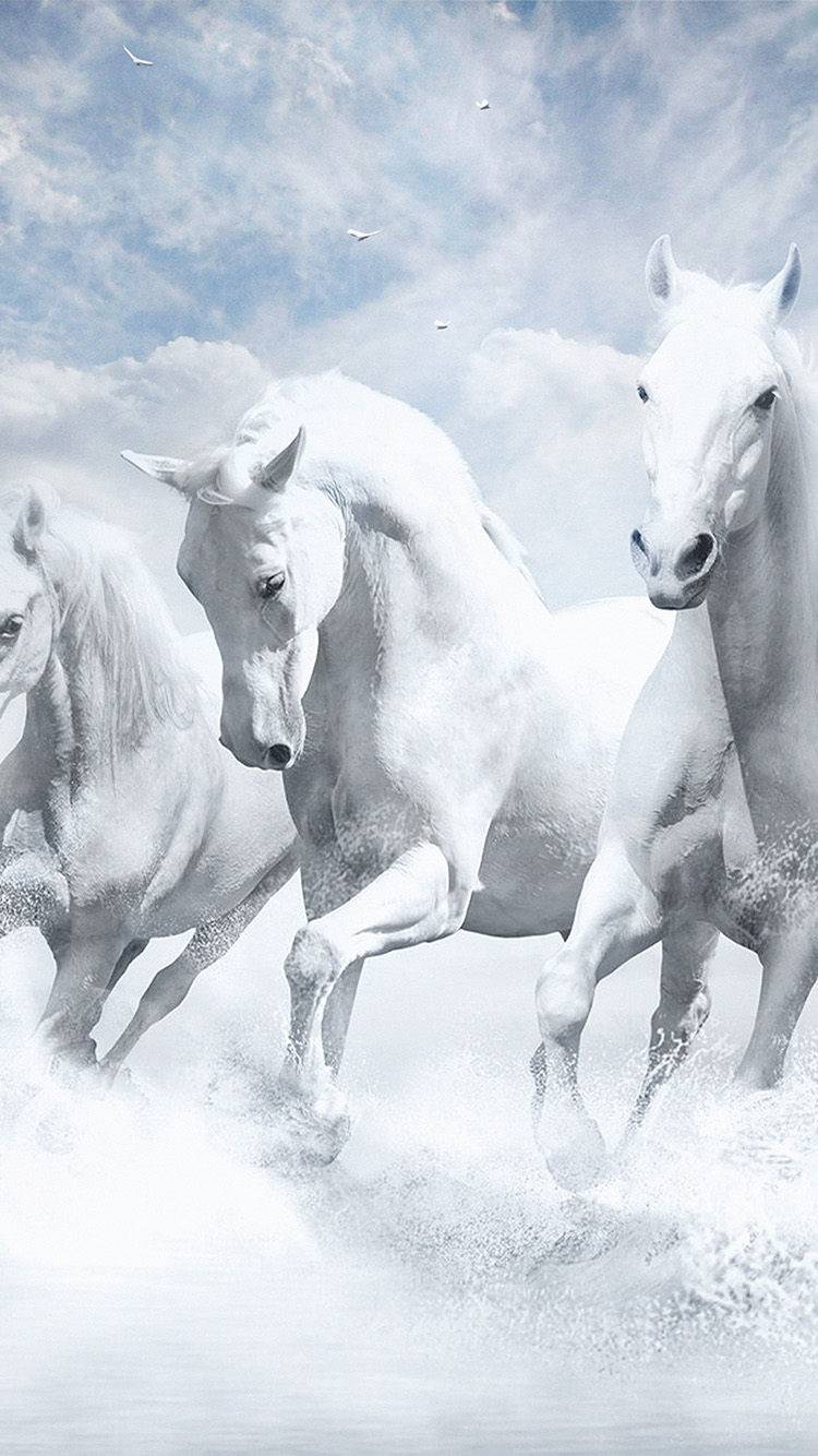 iPhone6papers.co-Apple-iPhone-6-iphone6-plus-wallpaper-au21-white-horses-water-sky-illustration-art