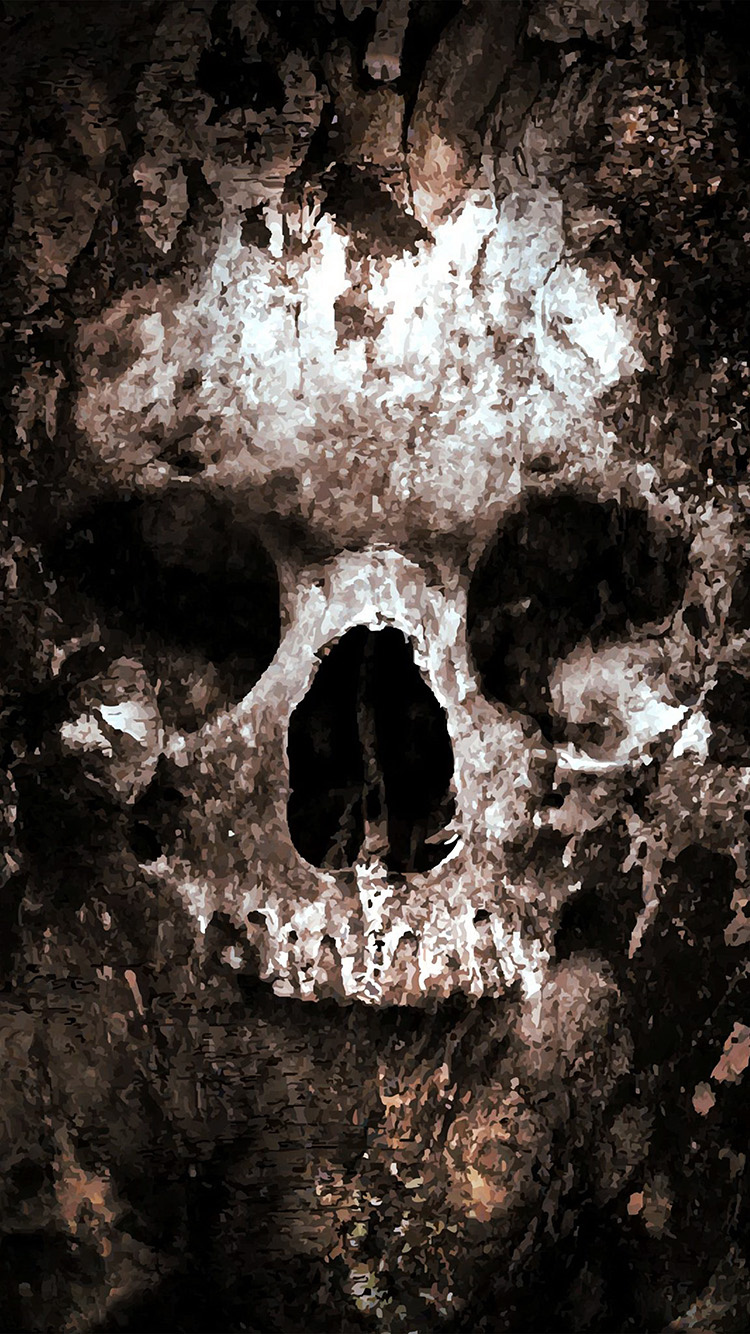 iPhone6papers.co-Apple-iPhone-6-iphone6-plus-wallpaper-au43-skull-face-ark-paint-illustration-art