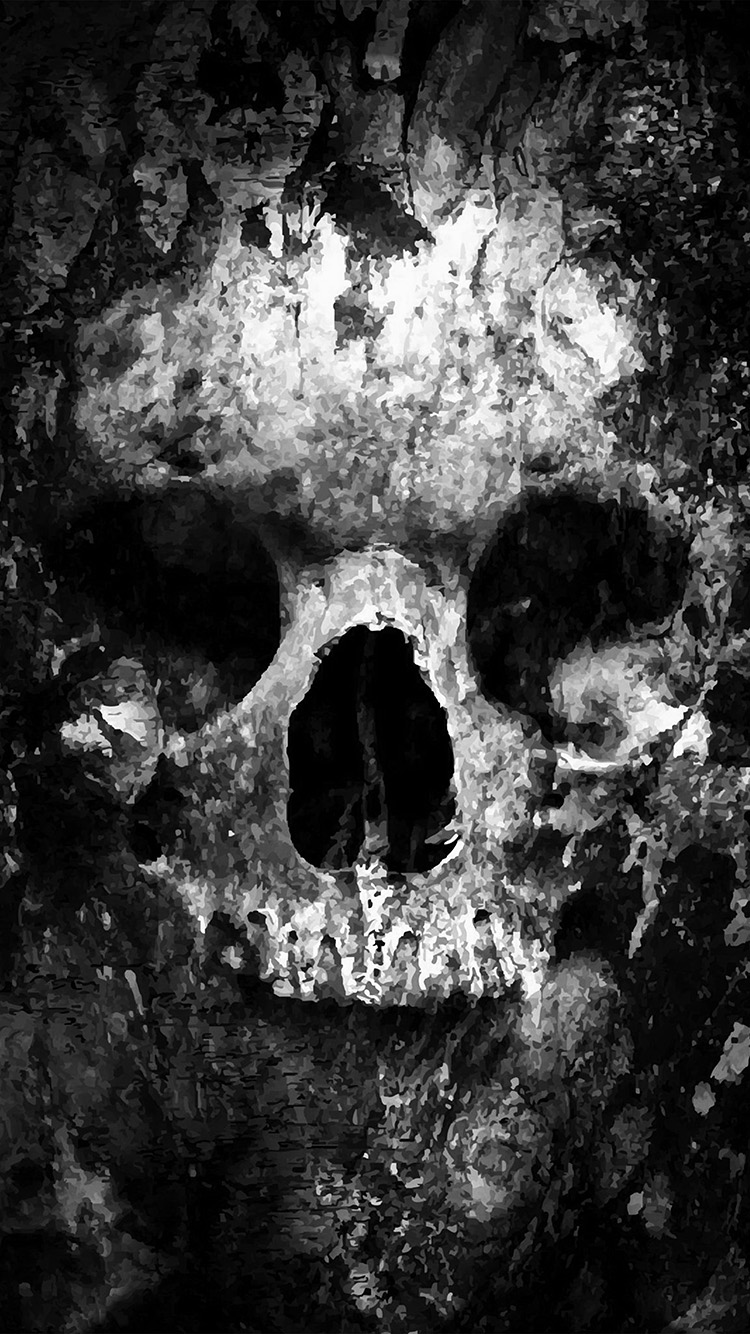 iPhone6papers.co-Apple-iPhone-6-iphone6-plus-wallpaper-au44-skull-face-ark-paint-illustration-art-bw-dark