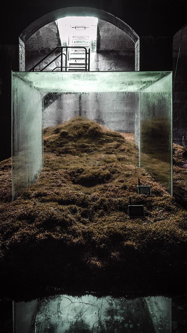freeios8.com-iphone-4-5-6-plus-ipad-ios8-ba29-home-nature-green-illustration-art-fall