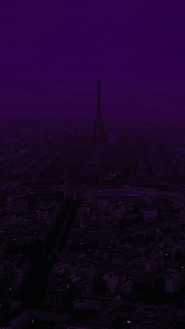 freeios8.com-iphone-4-5-6-plus-ipad-ios8-bb43-paris-dark-purple-city-illustration-art