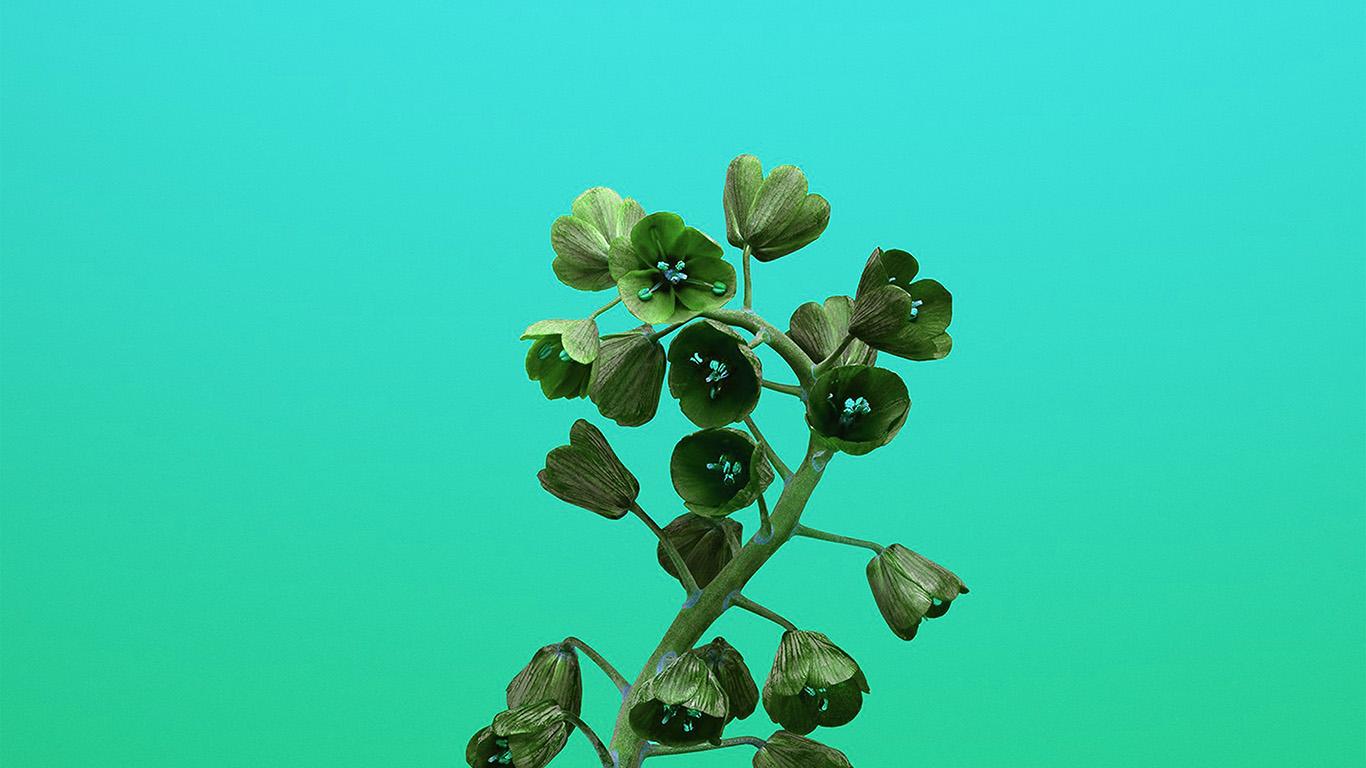 desktop-wallpaper-laptop-mac-macbook-air-bb83-apple-iphonex-flower-illustration-art-green-wallpaper