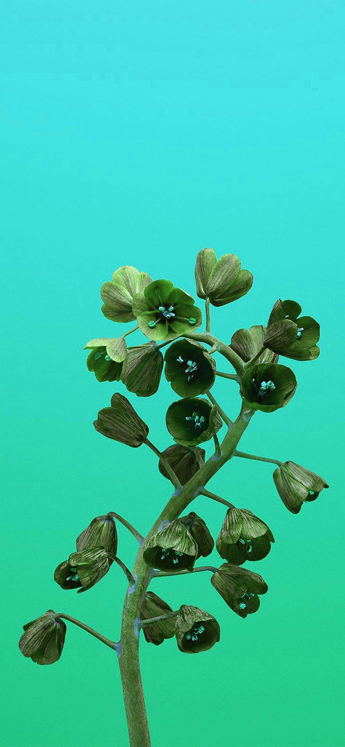iPhoneXpapers.com-Apple-iPhone-wallpaper-bb83-apple-iphonex-flower-illustration-art-green
