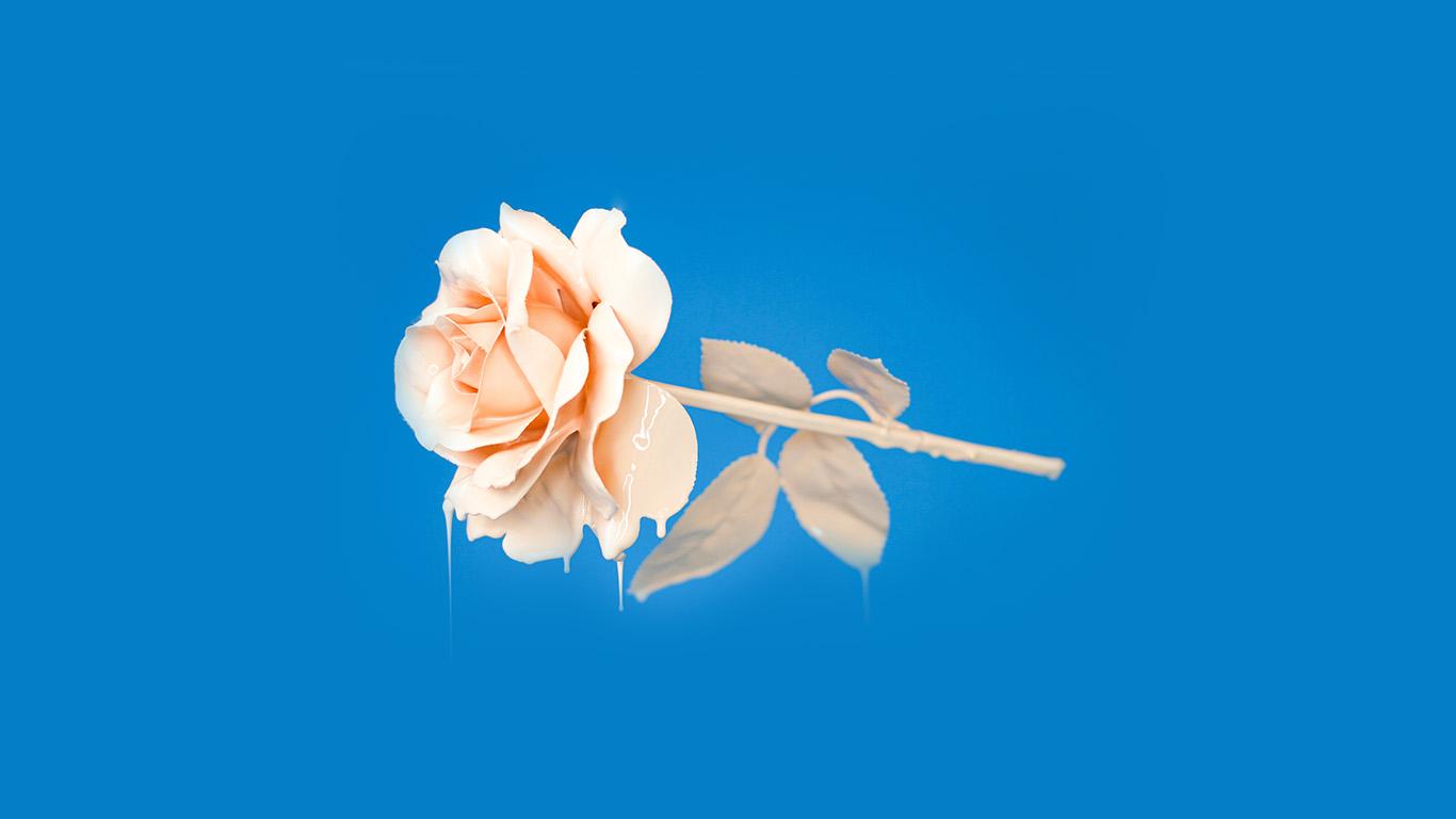 wallpaper-desktop-laptop-mac-macbook-bb94-rose-blue-illustration-art