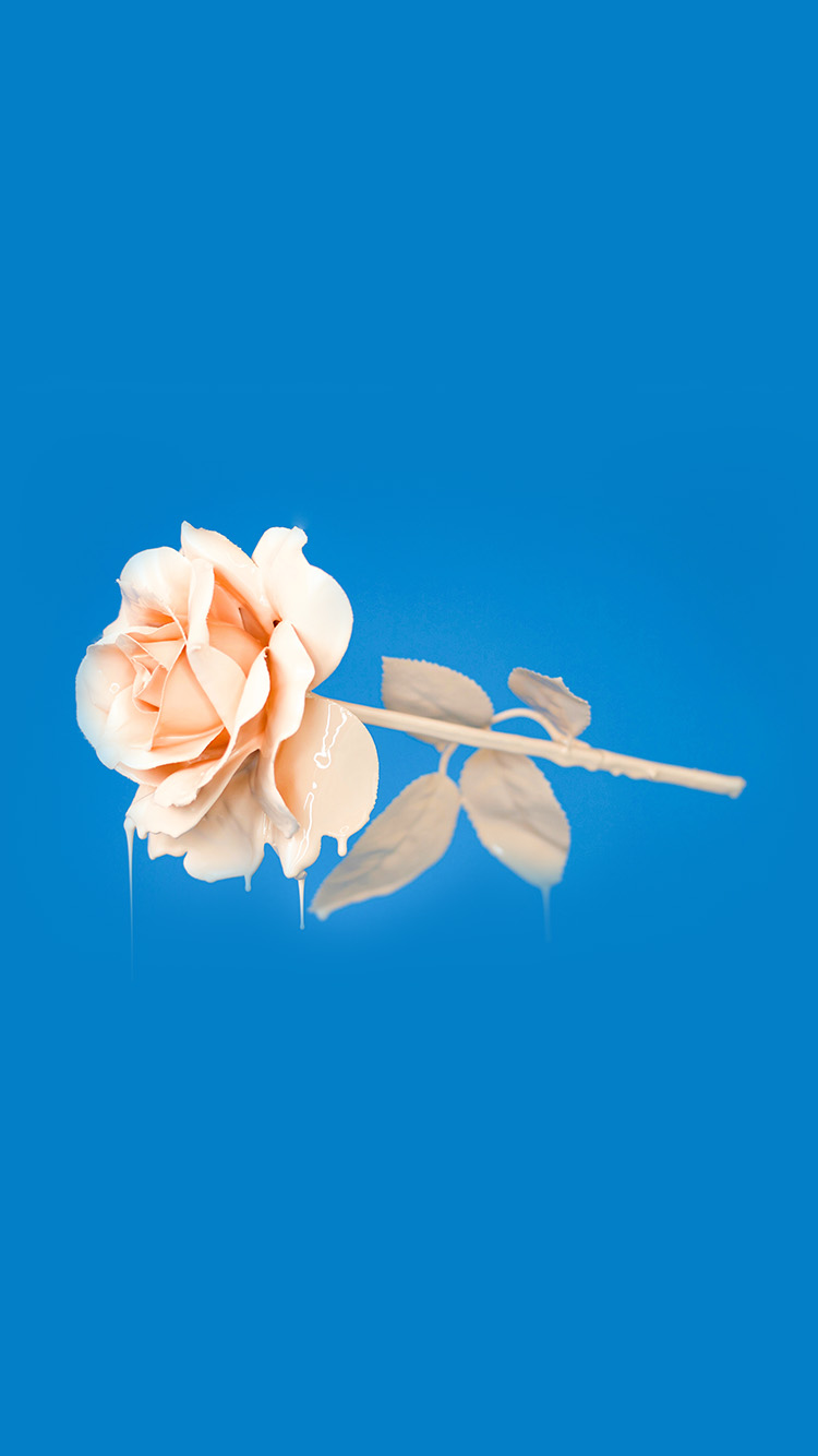 Papers.co-iPhone5-iphone6-plus-wallpaper-bb94-rose-blue-illustration-art