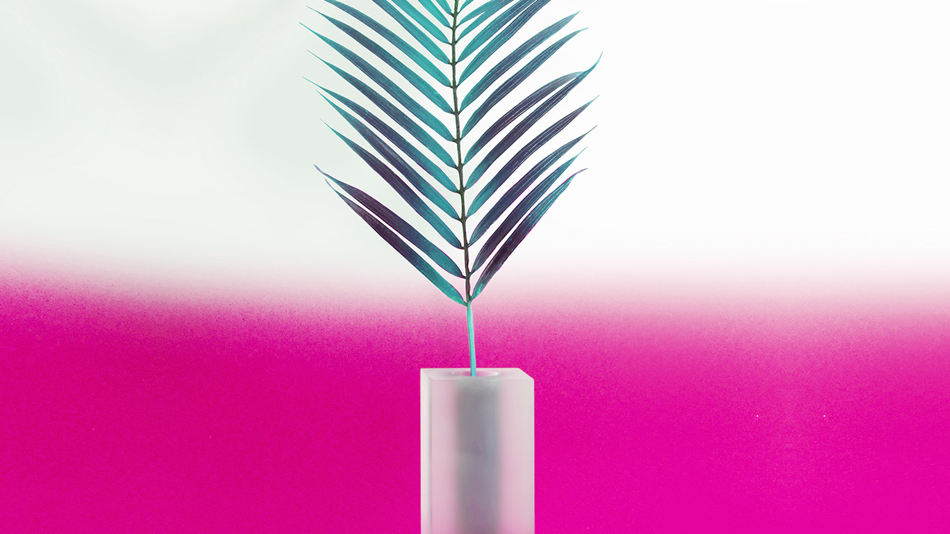 desktop-wallpaper-laptop-mac-macbook-air-bc93-plant-pink-minimal-home-art-illustration-wallpaper