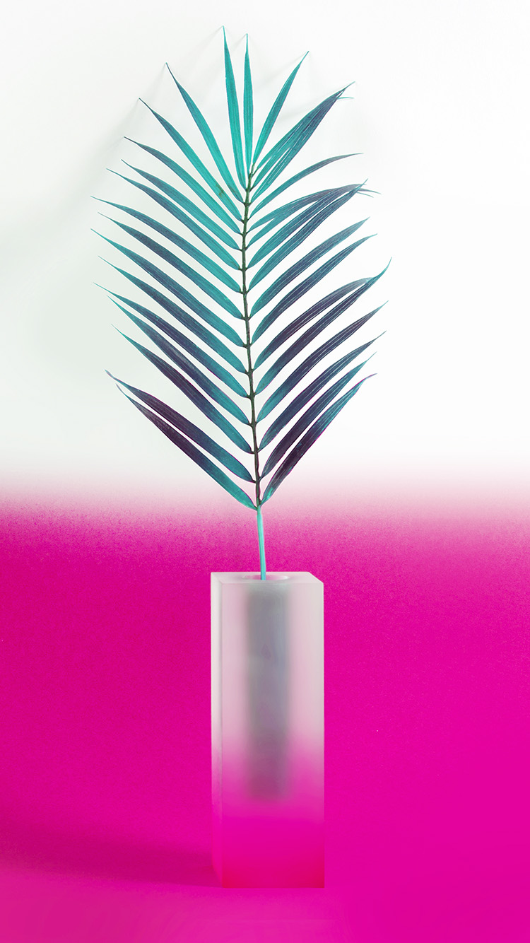 Papers.co-iPhone5-iphone6-plus-wallpaper-bc93-plant-pink-minimal-home-art-illustration