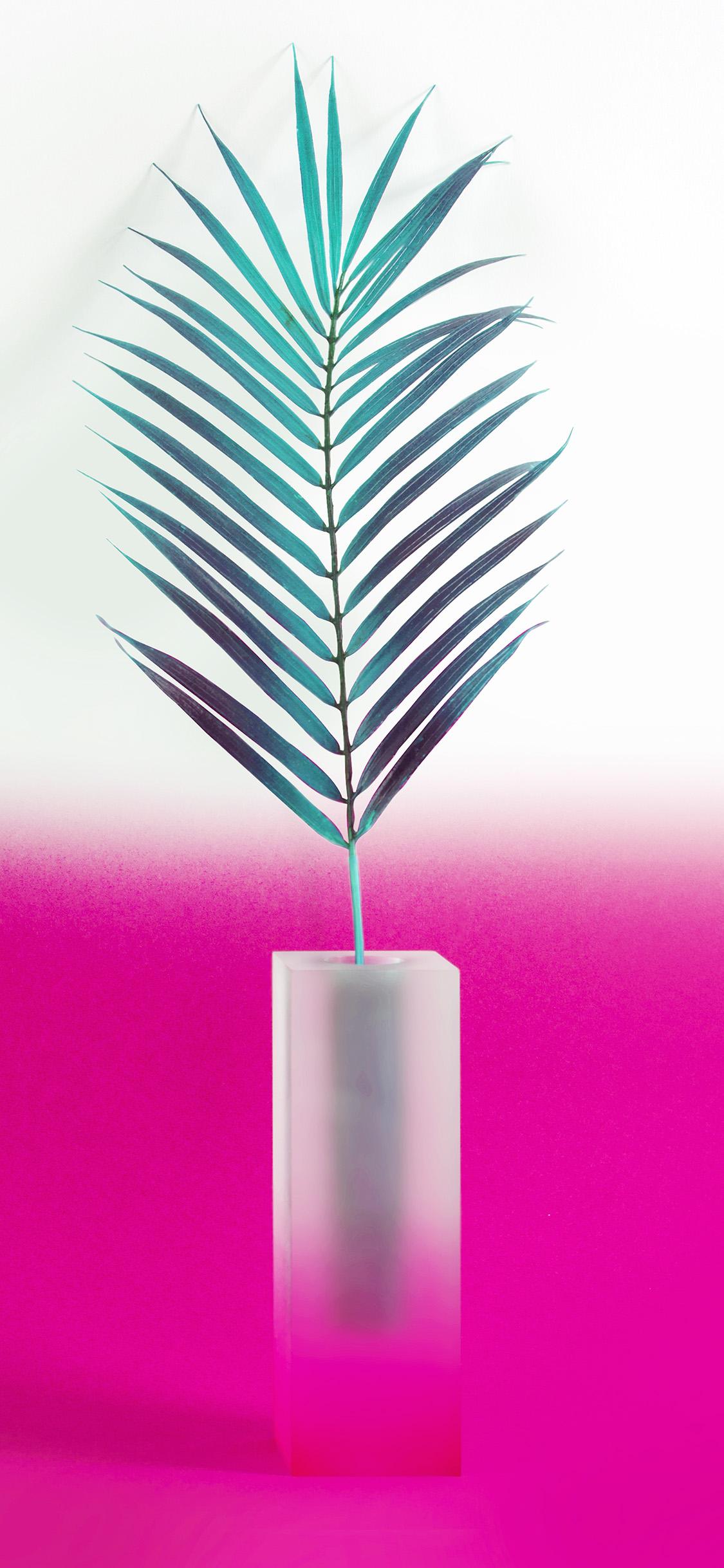iPhonexpapers.com-Apple-iPhone-wallpaper-bc93-plant-pink-minimal-home-art-illustration