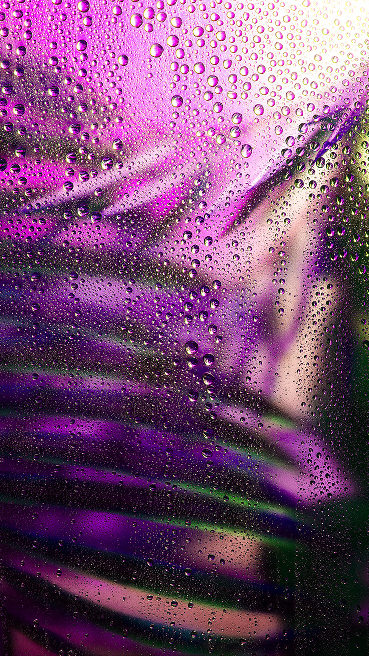 Papers.co-iPhone5-iphone6-plus-wallpaper-be20-raindrop-exotic-plant-art-illustration-purple