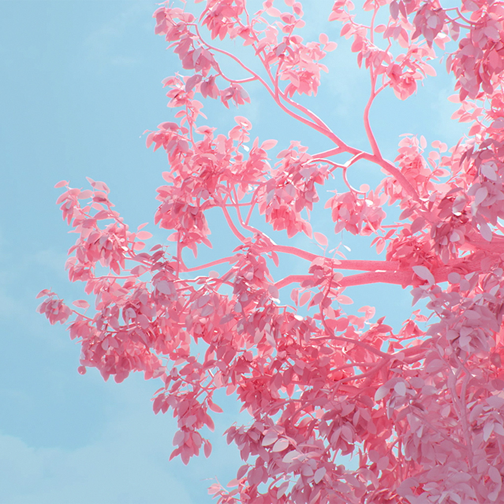 wallpaper-be25-tree-pink-spring-digital-art-illustration-wallpaper