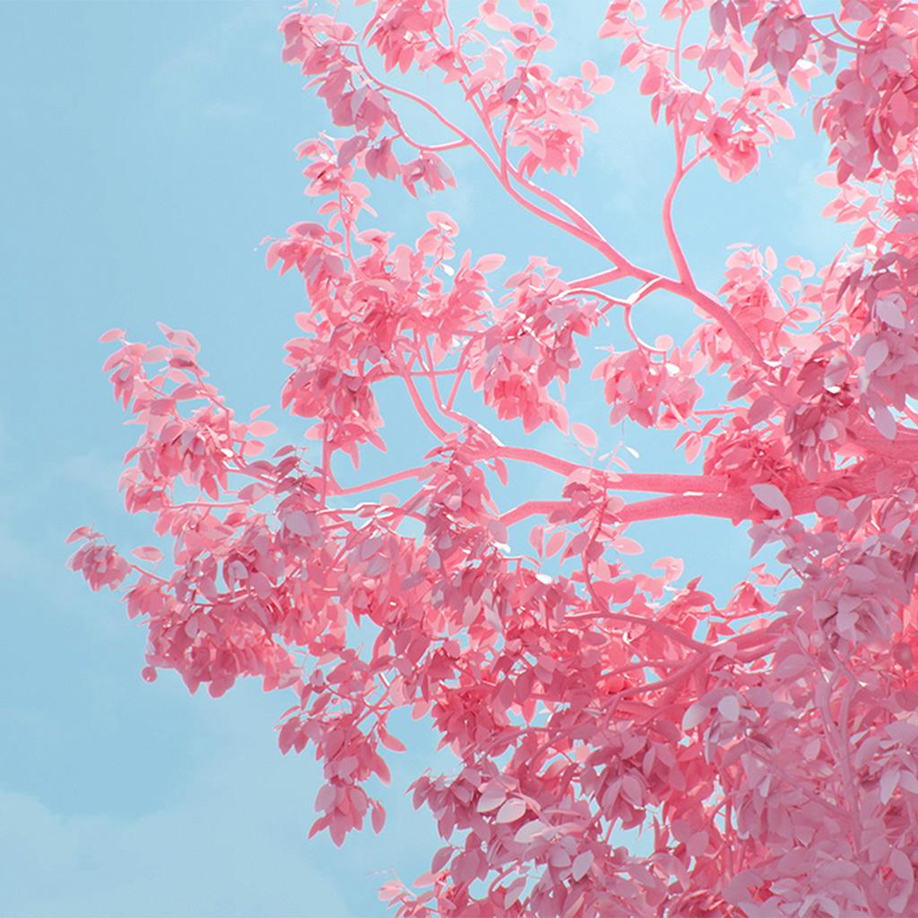 android-wallpaper-be25-tree-pink-spring-digital-art-illustration-wallpaper