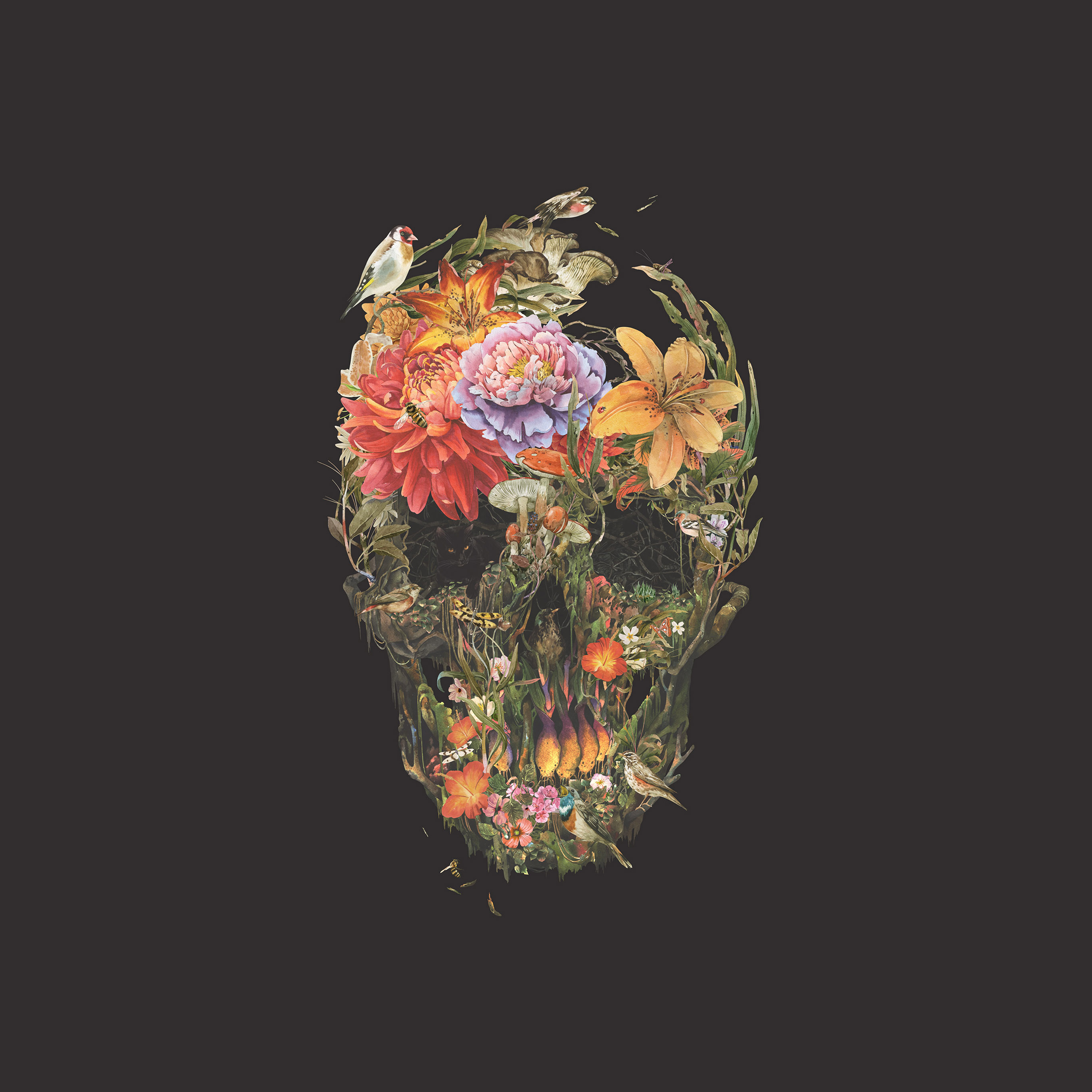 Bf04 Skull Flower Dark Painting Art Wallpaper