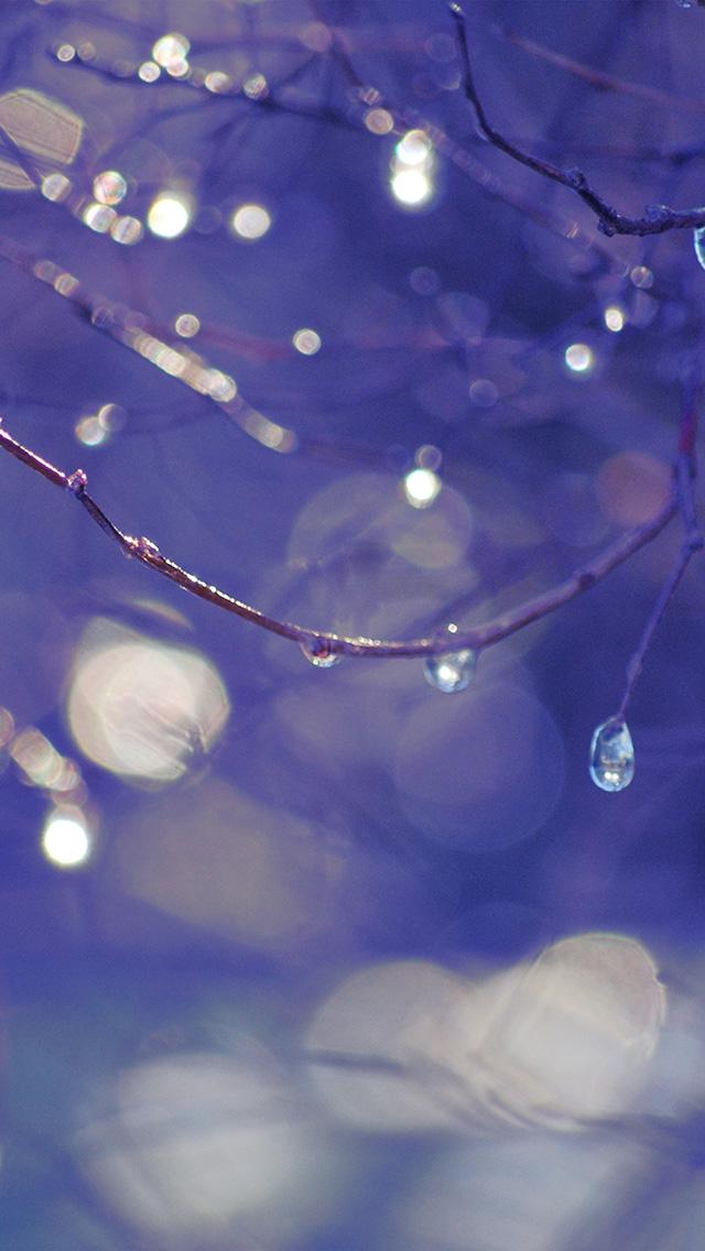 freeios8.com-iphone-4-5-6-plus-ipad-ios8-bf49-bokeh-rain-tree-art-blue