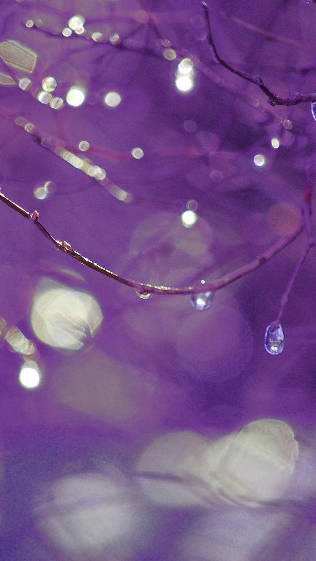 freeios8.com-iphone-4-5-6-plus-ipad-ios8-bf50-bokeh-rain-tree-art-purple