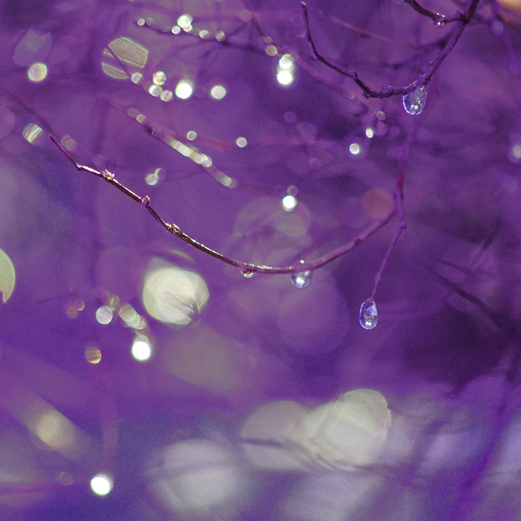 wallpaper-bf50-bokeh-rain-tree-art-purple-wallpaper