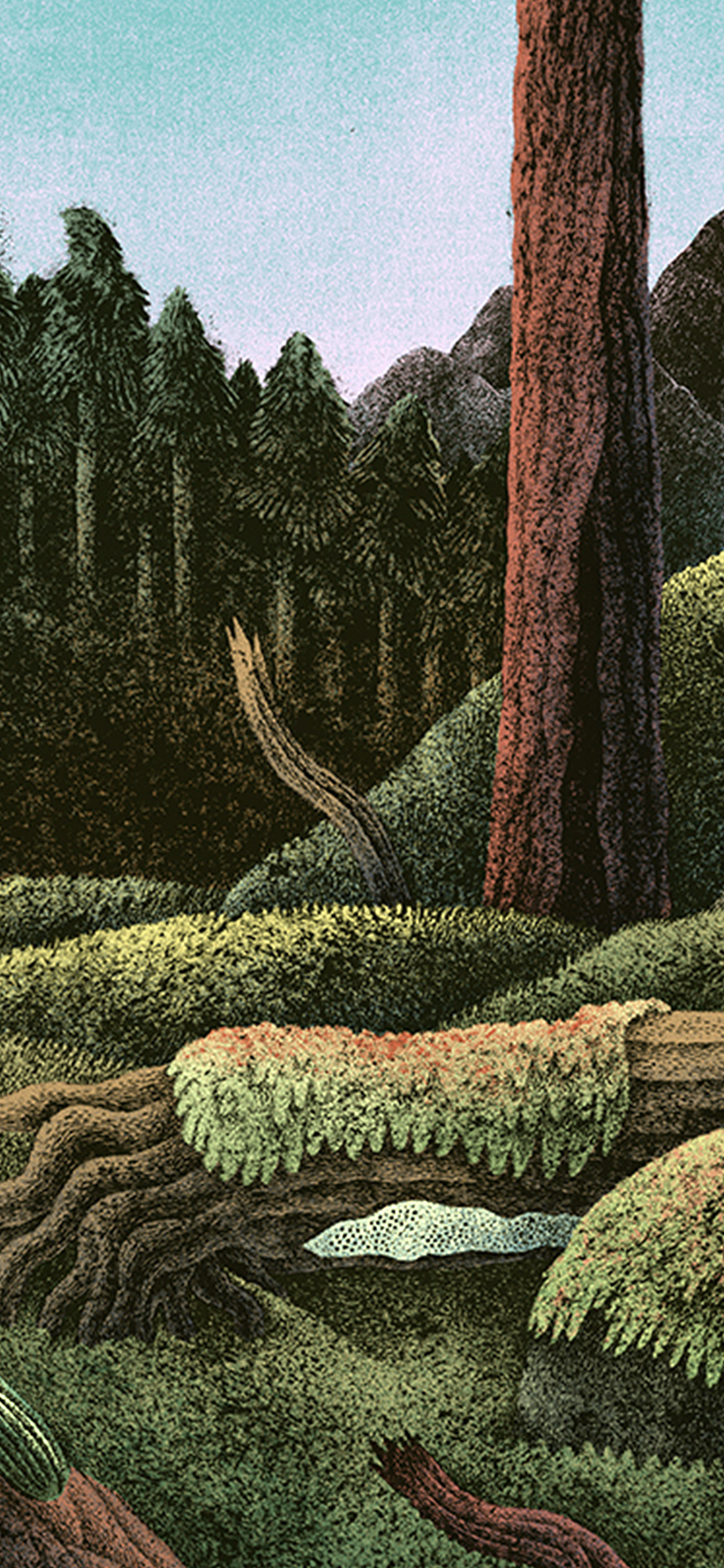 iPhonexpapers.com-Apple-iPhone-wallpaper-bf76-wood-forest-paint-illustration-art-nature