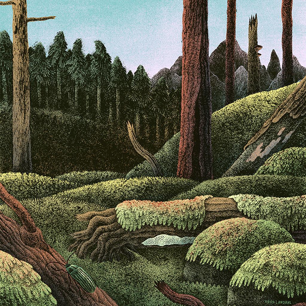 wallpaper-bf76-wood-forest-paint-illustration-art-nature-wallpaper