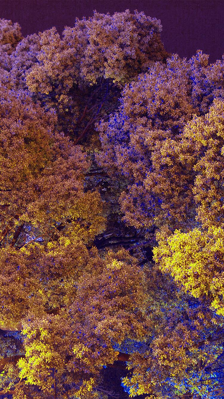 iPhonepapers.com-Apple-iPhone-wallpaper-bf98-tree-nature-art-purple