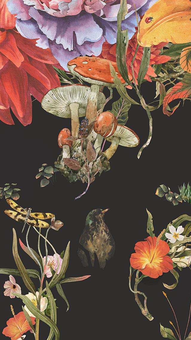 freeios8.com-iphone-4-5-6-plus-ipad-ios8-bg76-flower-drawing-illust-paint-art