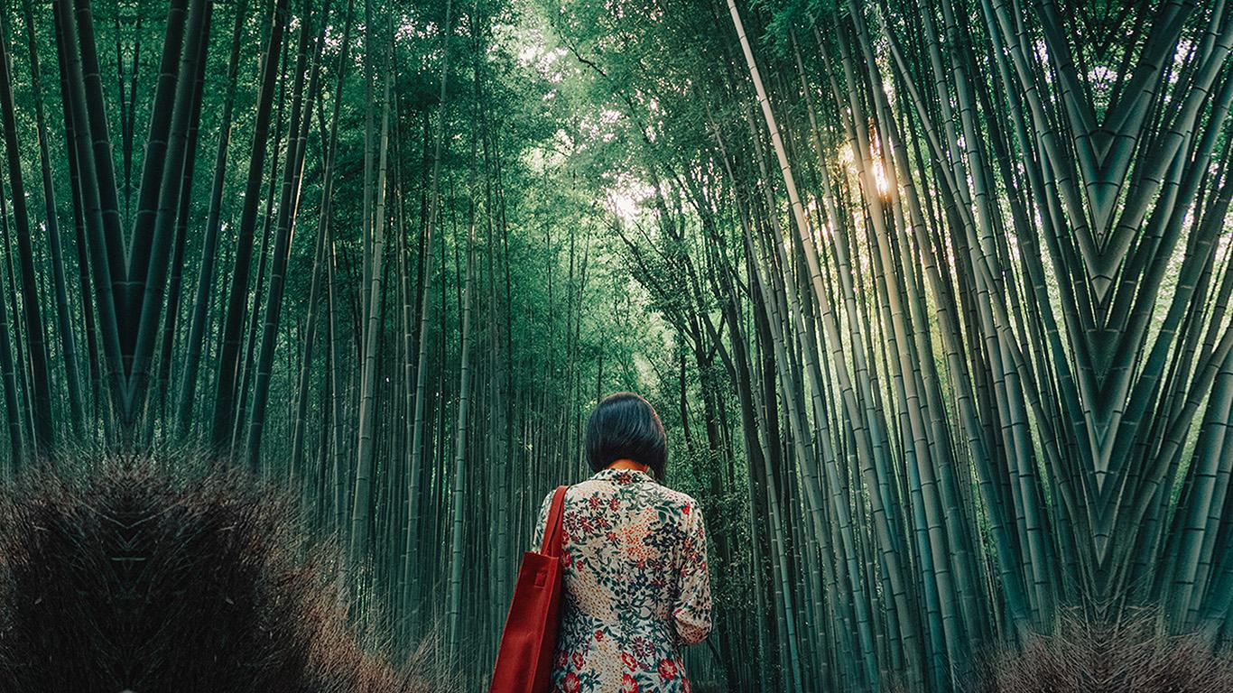 wallpaper-desktop-laptop-mac-macbook-bi22-forest-bamboo-wood-girl-art
