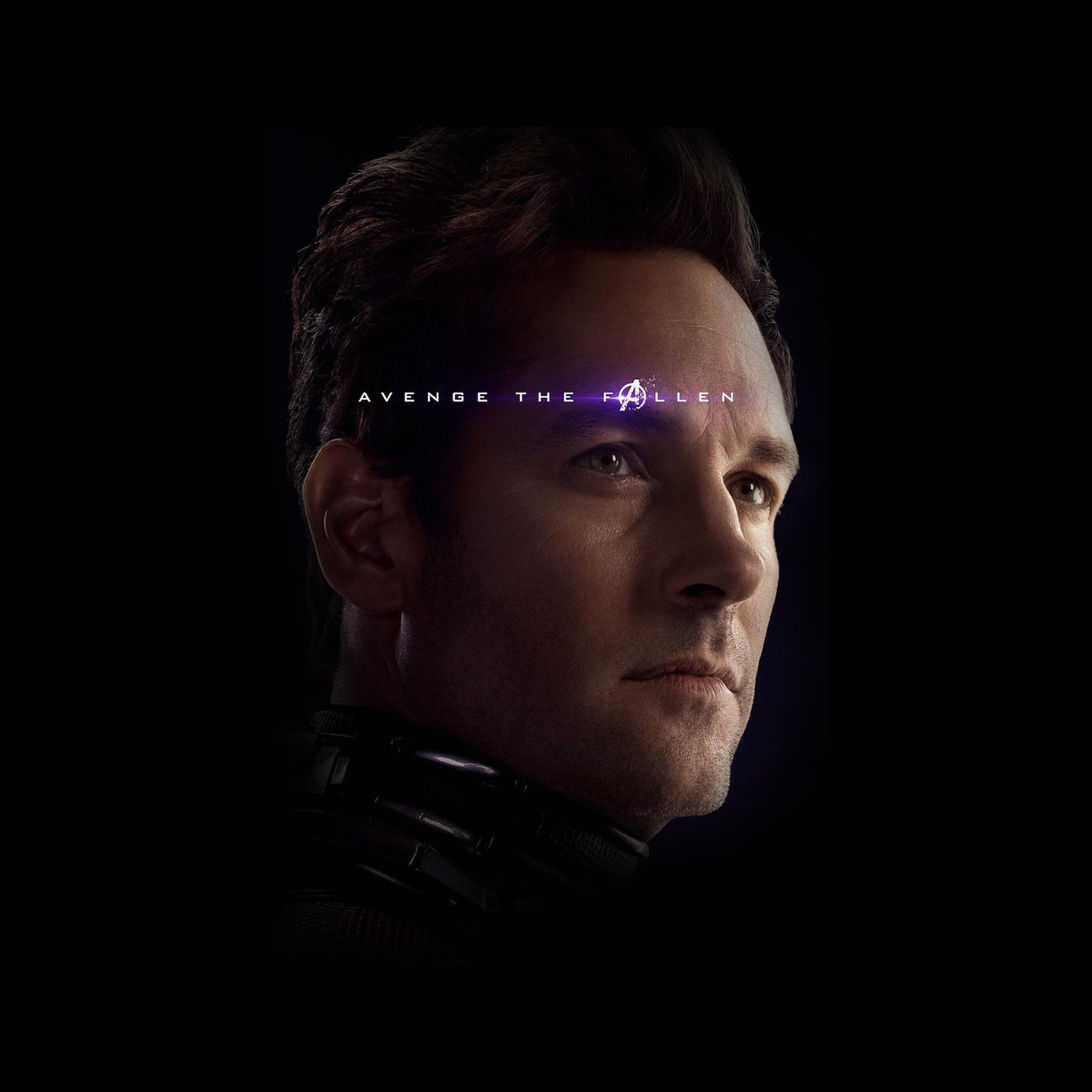 bi45-hero-avengers-endgame-film-antman-marvel-art-wallpaper