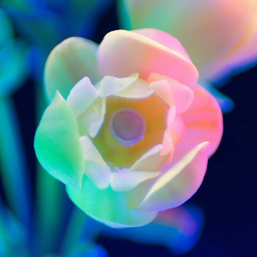 wallpaper-bj23-neon-flower-night-color-art-wallpaper