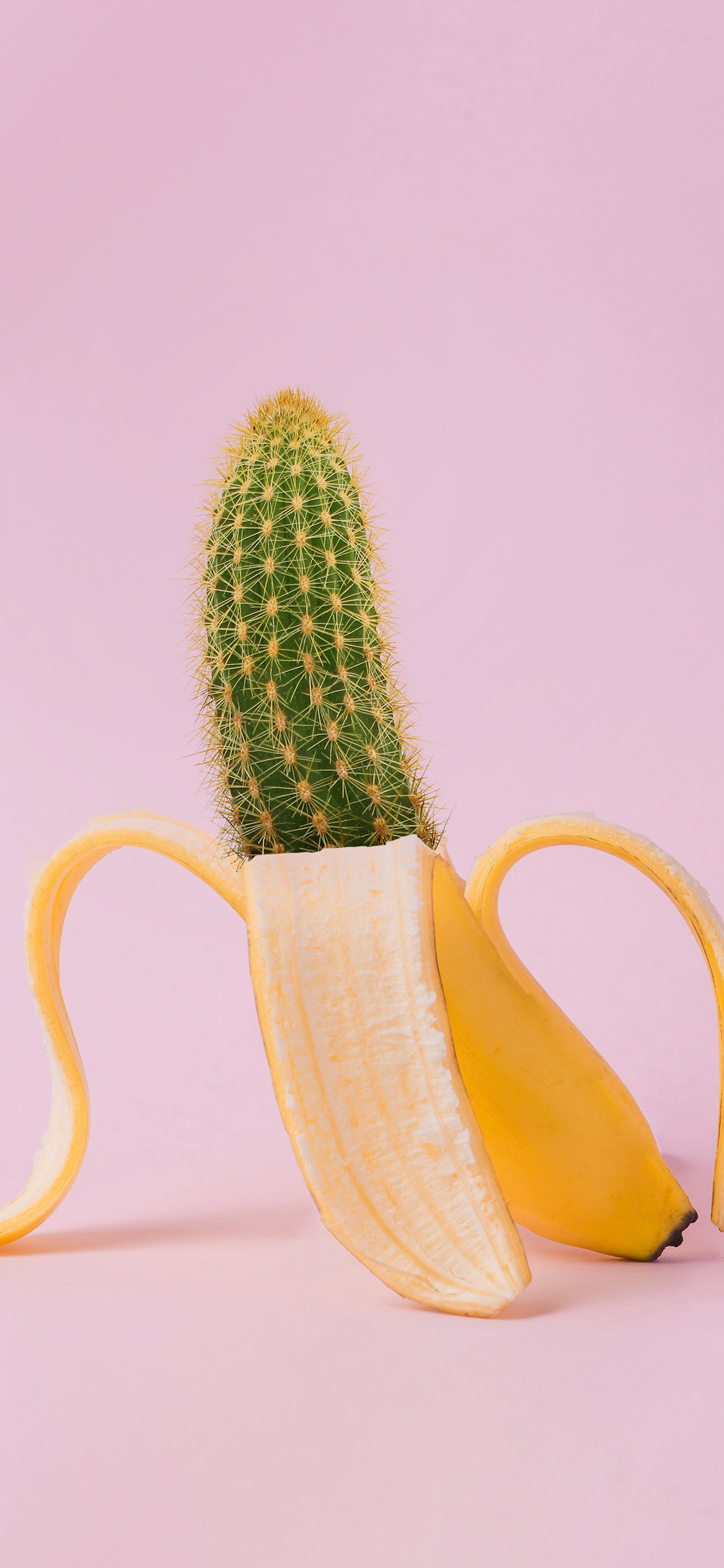 iPhonexpapers.com-Apple-iPhone-wallpaper-bj86-art-banana-cactus