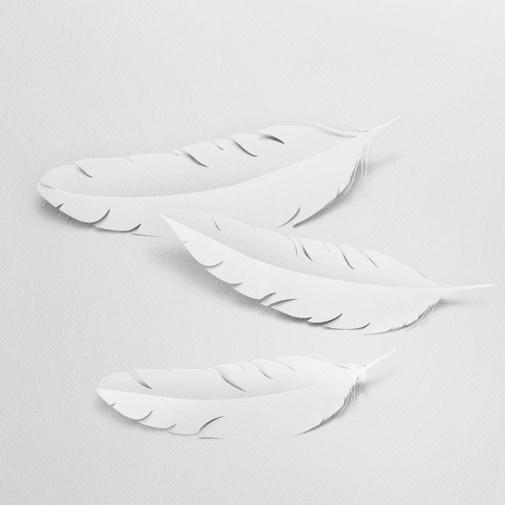 android-wallpaper-bk09-art-paper-bird-white-wallpaper