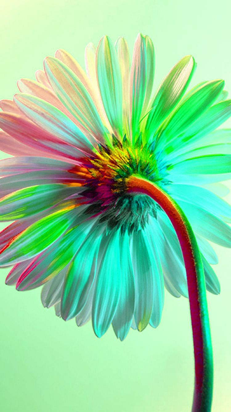 iPhone7papers.com-Apple-iPhone7-iphone7plus-wallpaper-bk72-art-flower-rainbow-green
