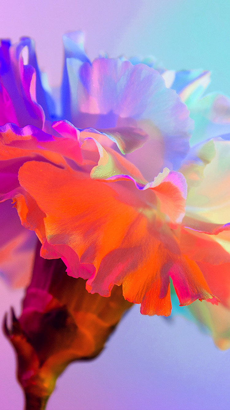 iPhone7papers.com-Apple-iPhone7-iphone7plus-wallpaper-bk81-art-spring-flower-rainbow-red