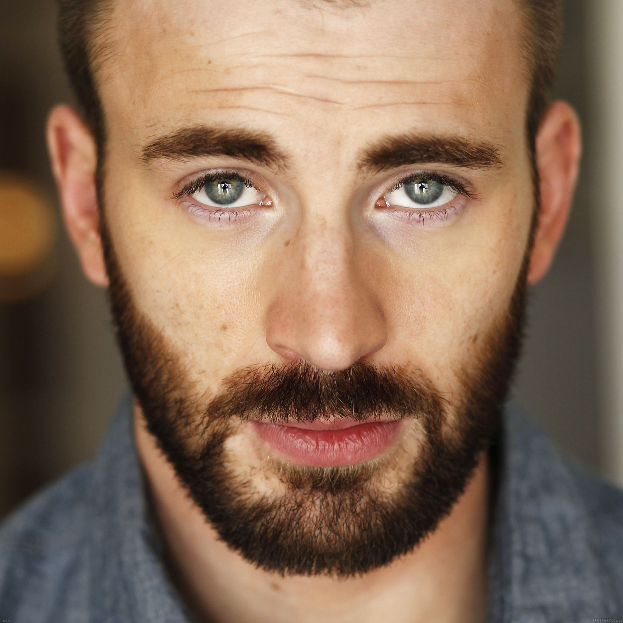 hb73-chris-evans-actor...