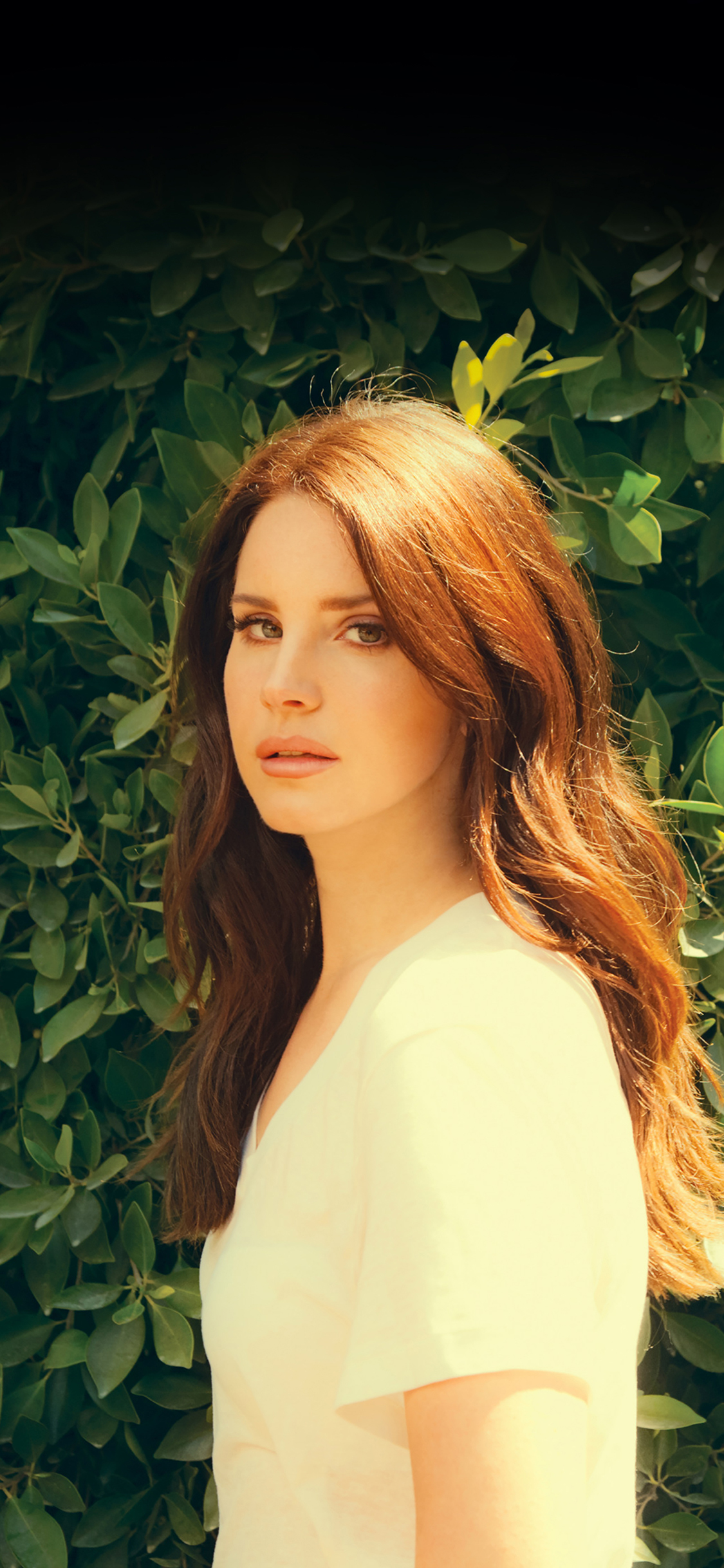 Hd60 Lana Del Rey Music Singer Celebrity Papers Co