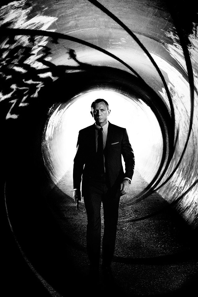 james bond essay introduction The evolution of james bond name subject professor date james bond : a cultural icon james bond (the movie and the person ) became a cultural icon because the.