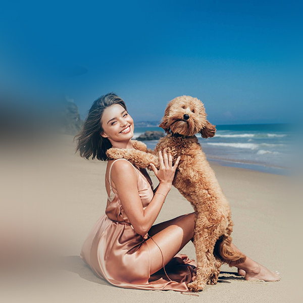 iPapers.co-Apple-iPhone-iPad-Macbook-iMac-wallpaper-hr11-miranda-kerr-dog-beach-summer-model-girl-wallpaper