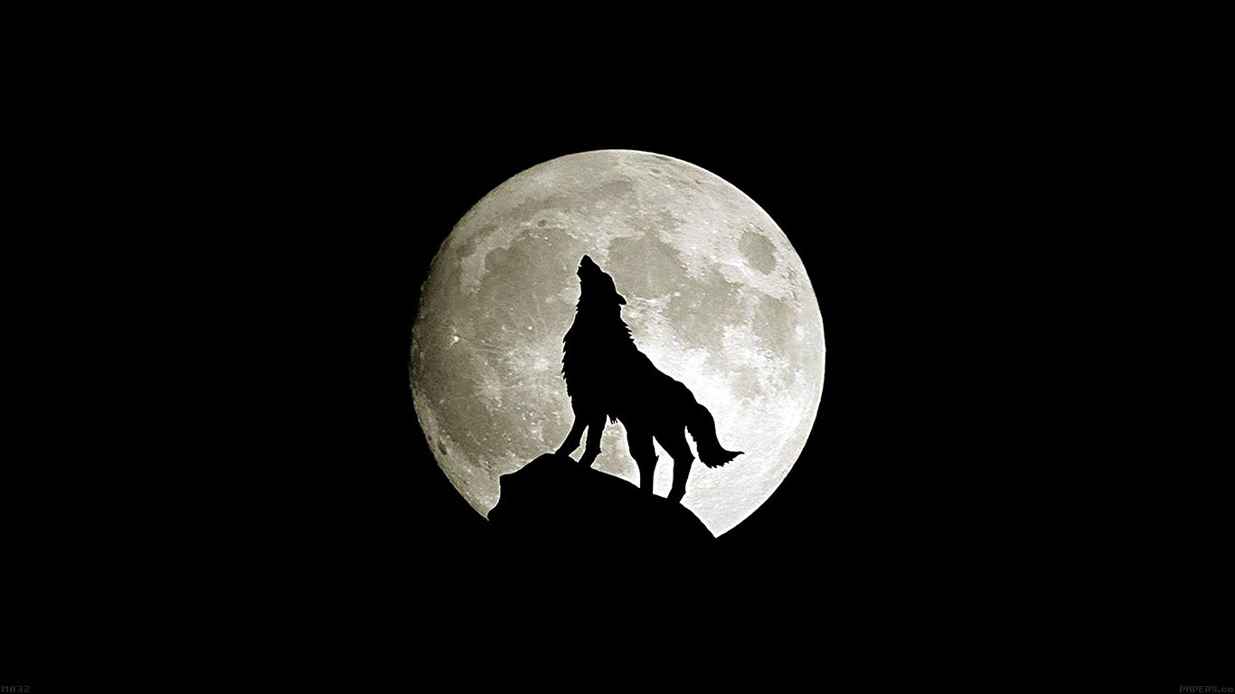 wallpaper-desktop-laptop-mac-macbook-ma32-wolf-howl-animal-dark-minimal-nature-wallpaper