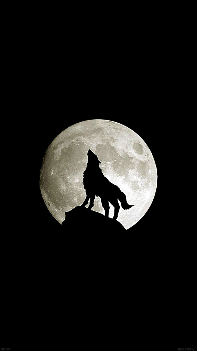 freeios8.com-iphone-4-5-6-ipad-ios8-ma32-wolf-howl-animal-dark-minimal-nature