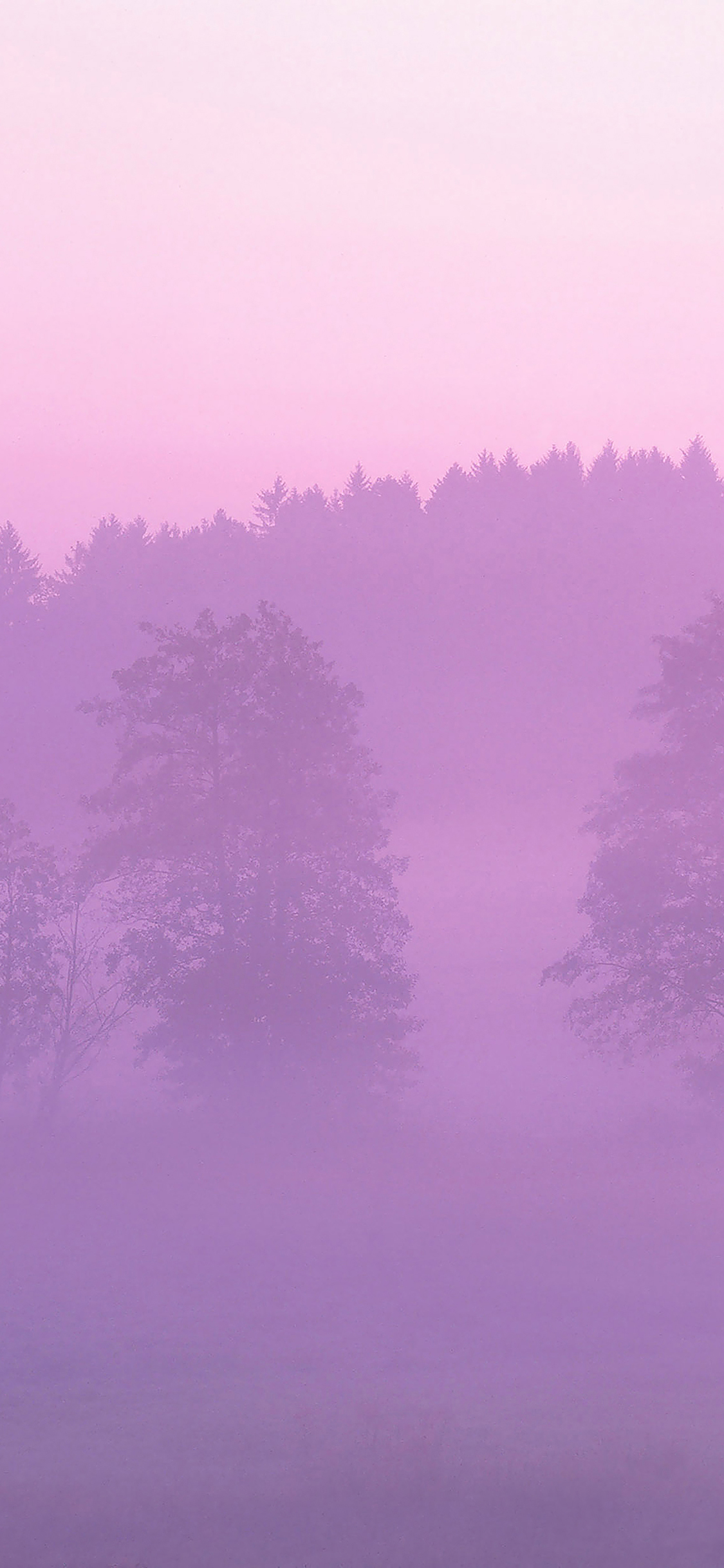 iPhoneXpapers.com-Apple-iPhone-wallpaper-ma37-misty-pink-forest-mountain-nature