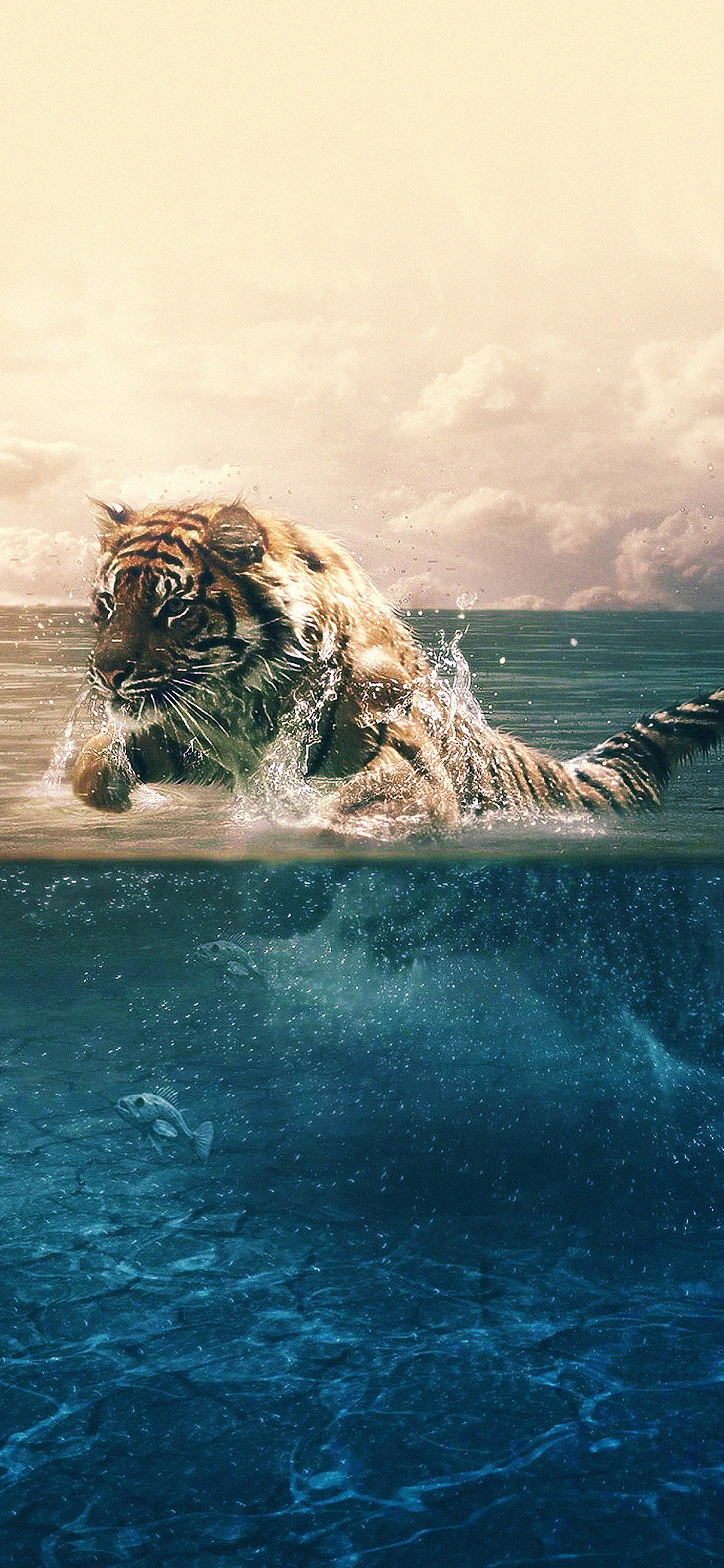 iPhoneXpapers.com-Apple-iPhone-wallpaper-ma95-tiger-running-blue-sea-nature
