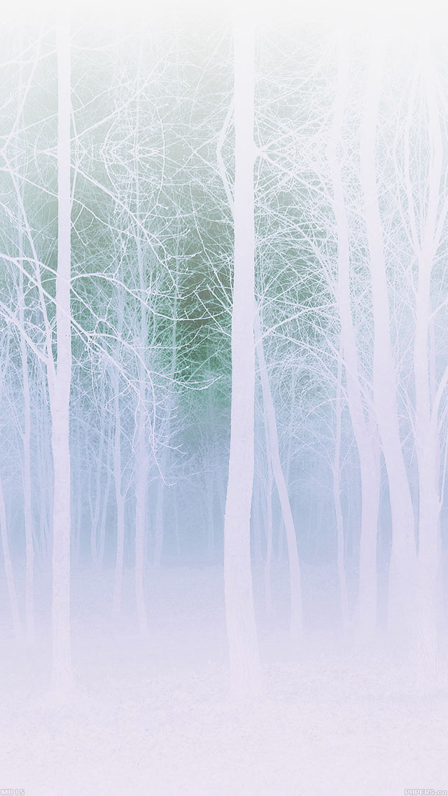 freeios8.com-iphone-4-5-6-ipad-ios8-mb15-wallpaper-foggy-forest-white