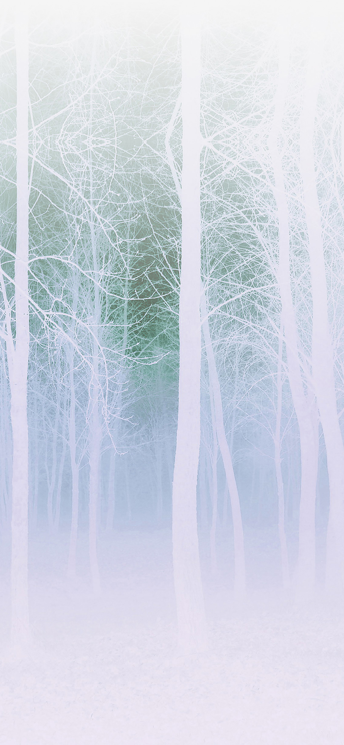 iPhoneXpapers.com-Apple-iPhone-wallpaper-mb15-wallpaper-foggy-forest-white