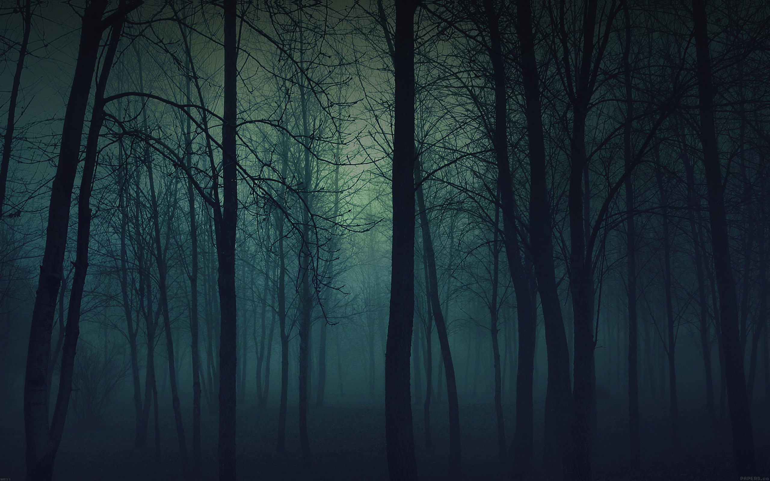 Mb33 Wallpaper Foggy Forest Mountain Papers Co