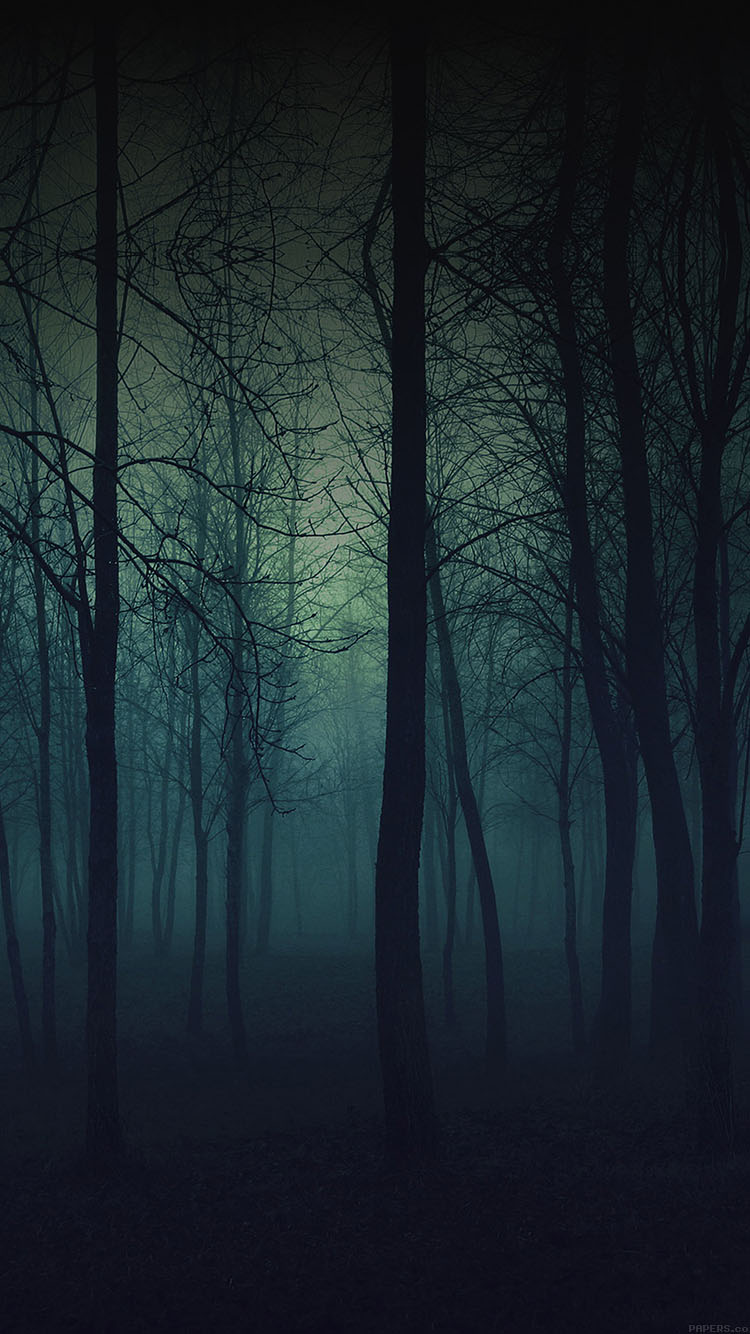 iPhonepapers.com-Apple-iPhone8-wallpaper-mb33-wallpaper-foggy-forest-mountain