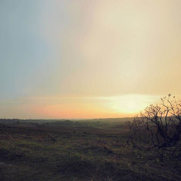 iPapers.co-Apple-iPhone-iPad-Macbook-iMac-wallpaper-mb38-wallpaper-field-sundown-nature
