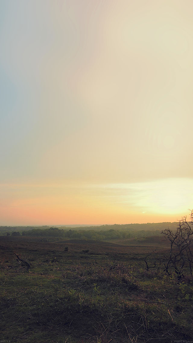 freeios8.com-iphone-4-5-6-ipad-ios8-mb38-wallpaper-field-sundown-nature