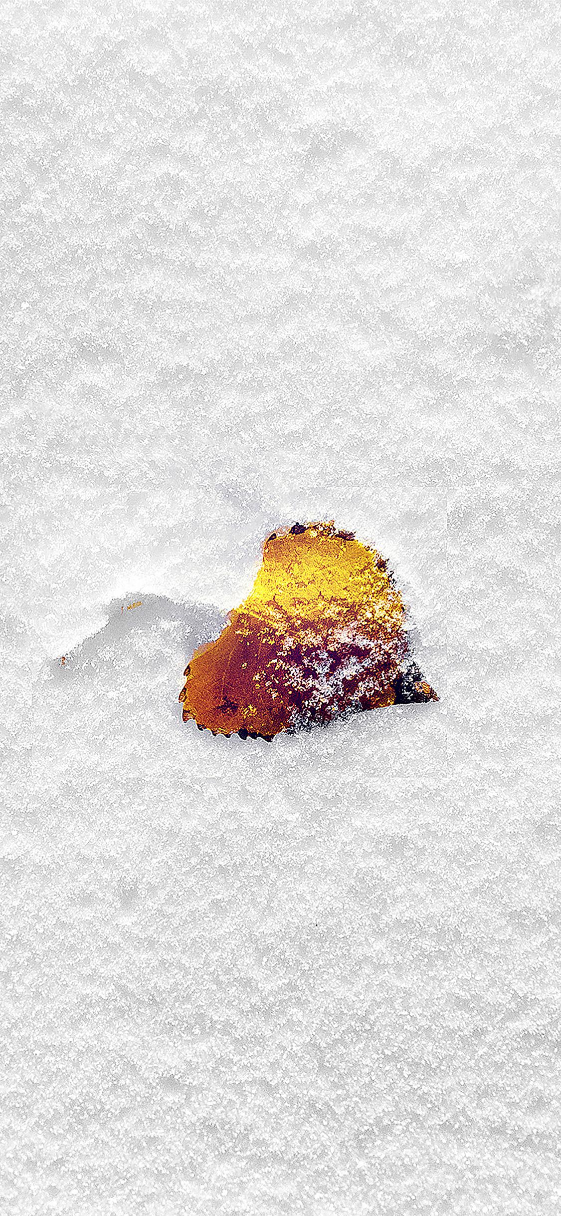 iPhoneXpapers.com-Apple-iPhone-wallpaper-mb62-wallpaper-boo-201-snow-leaf