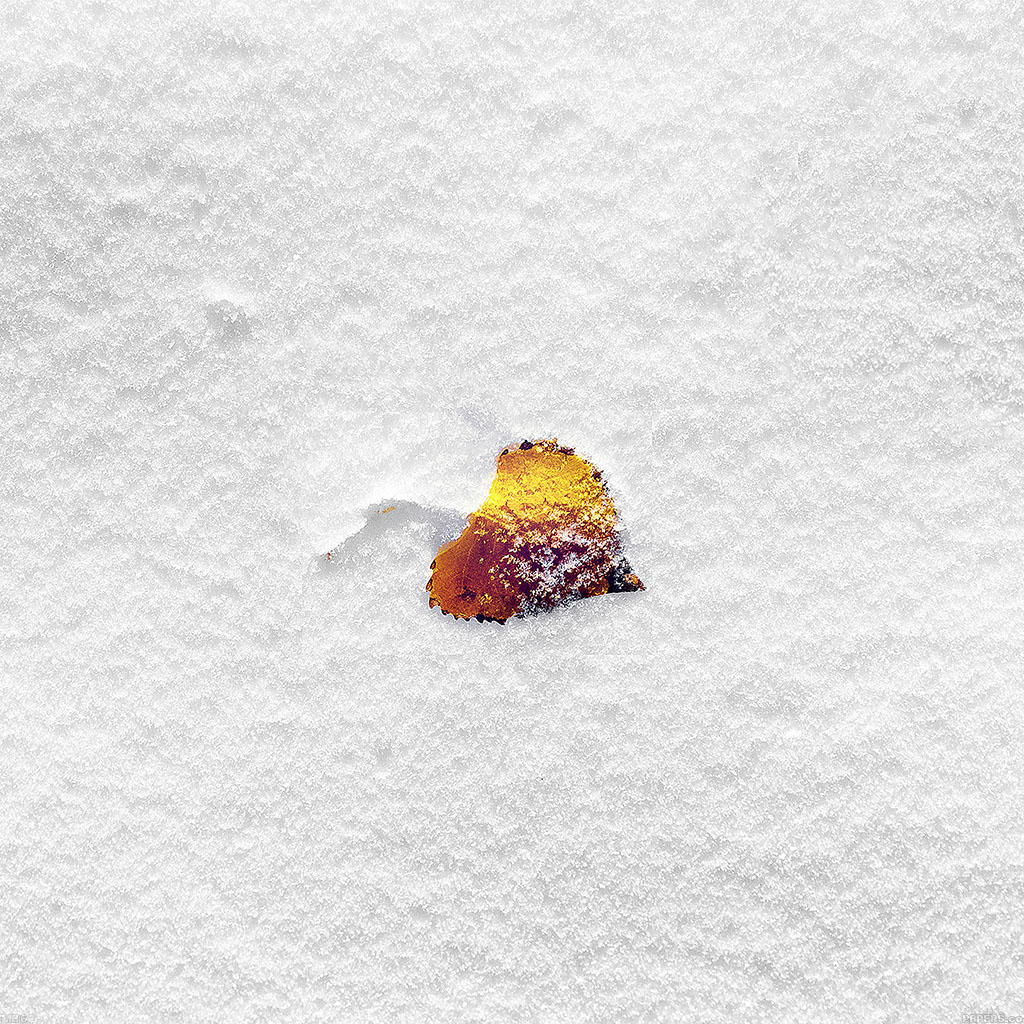 android-wallpaper-mb62-wallpaper-boo-201-snow-leaf-wallpaper