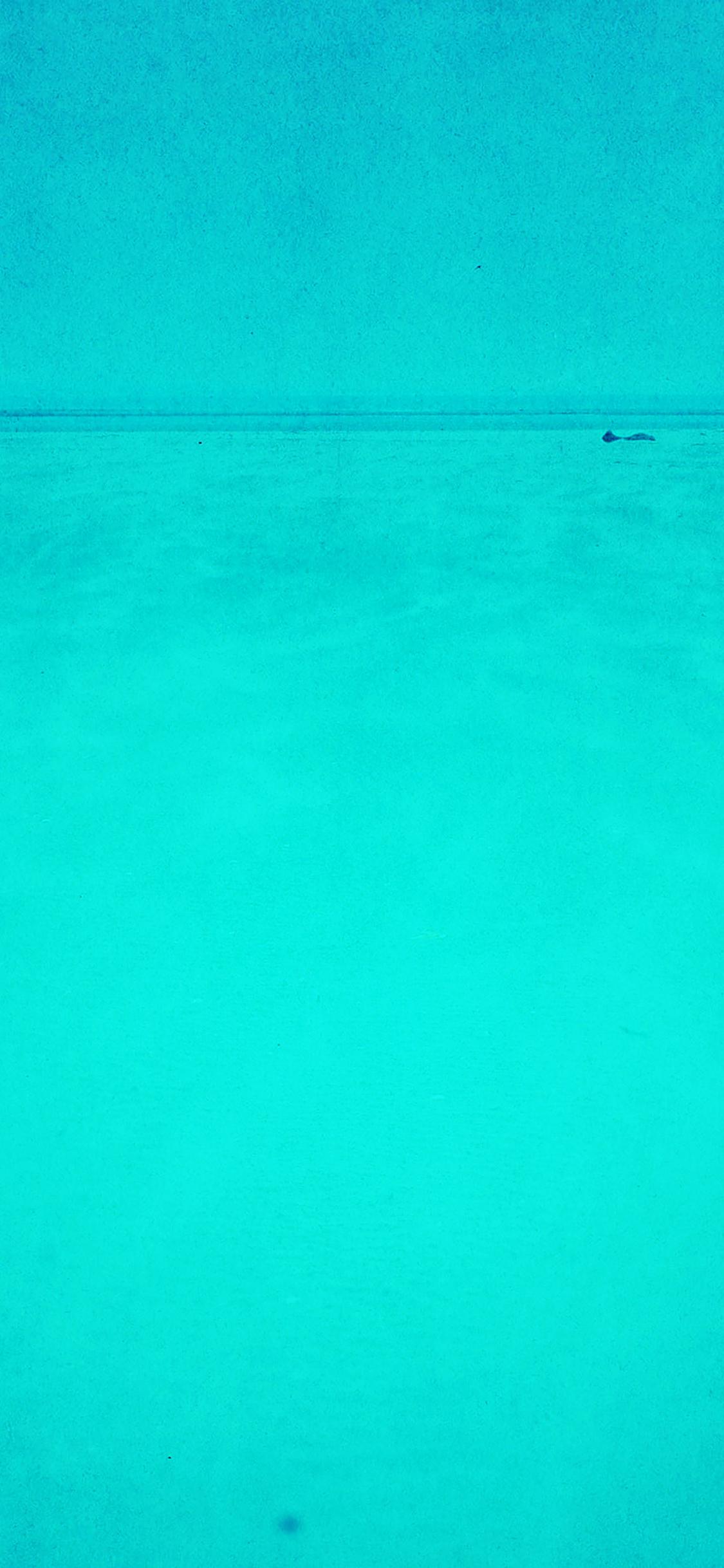 iPhoneXpapers.com-Apple-iPhone-wallpaper-mc21-wallpaper-green-sea-minimal